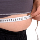 Studies Prove Gut Bacteria and Obesity Link