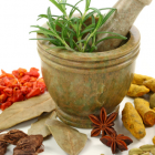 Top 10 Best Ayurvedic Herbs for Health